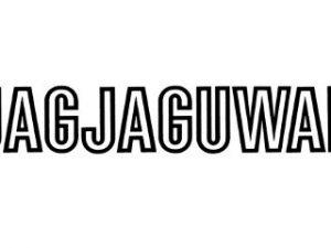 Label of the Week: Jagjaguwar