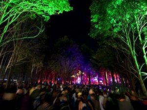 Spotlight on Electric Forest – Headliners Preview with Bassnectar and STS9