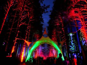 Spotlight on Electric Forest – Paper Diamond and MiMOSA
